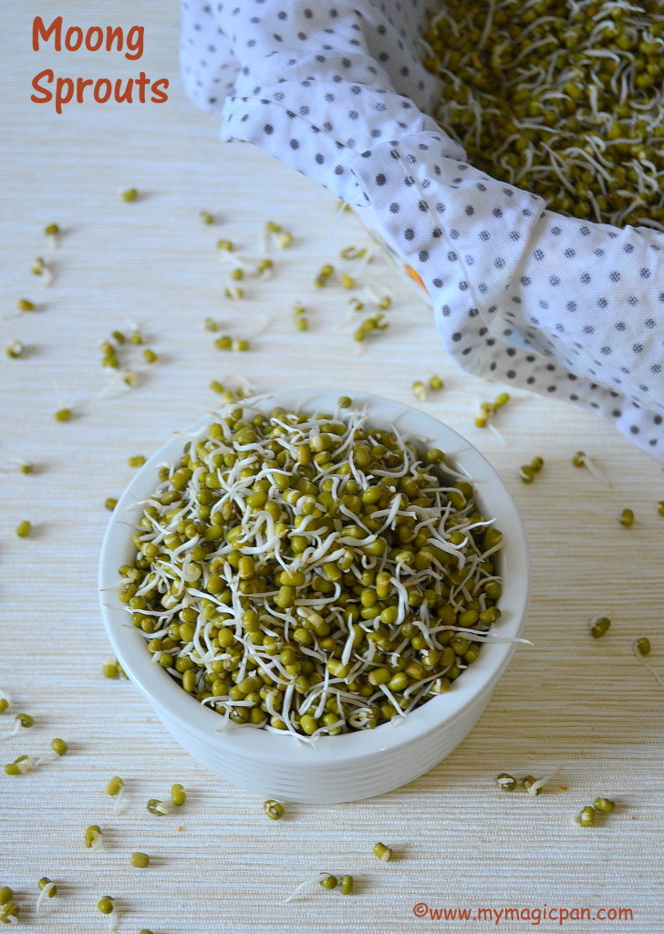 How to make Moong Sprouts My Magic Pan