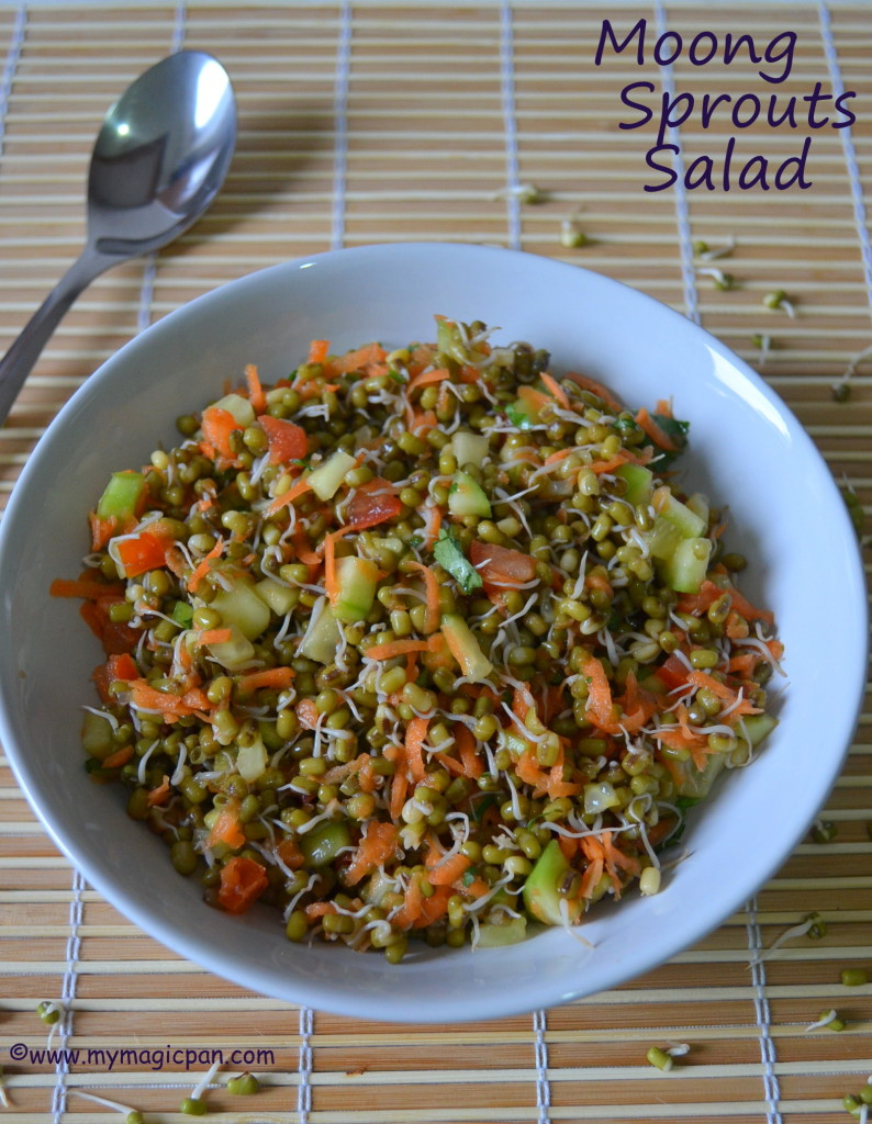 Sprouts Salad My Magic Pan