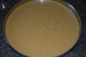 7 Cup Burfi My Magic Pan